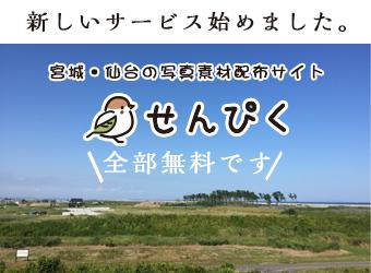 宮城・仙台のフリー写真素材配布サイト せんぴく
