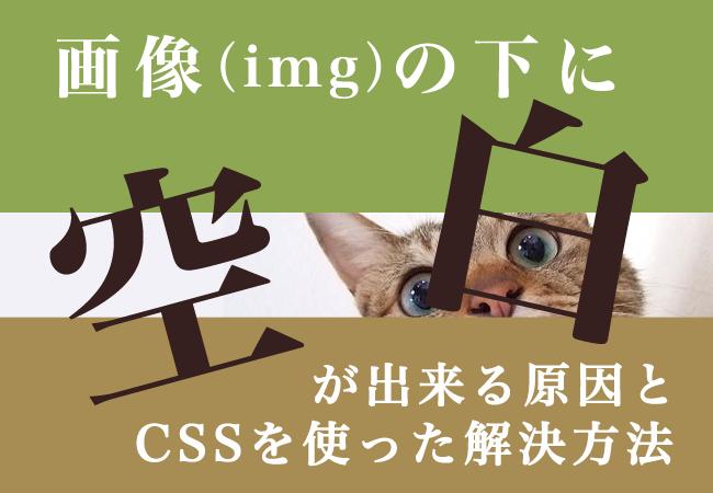 画像の下に空白が出来る原因とCSSを使った解決方法