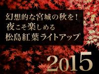 幻想的な宮城の秋を!夜こそ楽しめる松島紅葉ライトアップ2015
