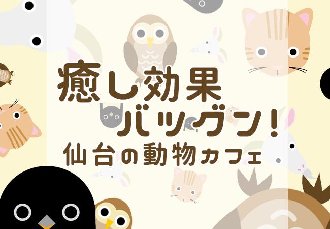 癒し効果バツグン!仙台の動物カフェ(アニマルカフェ)