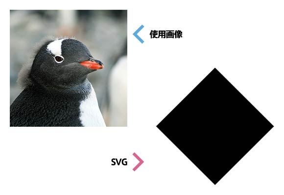 svg_clippingmask_1