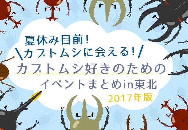 夏休み目前!カブトムシに会える!カブトムシ好きのためのイベントまとめin東北