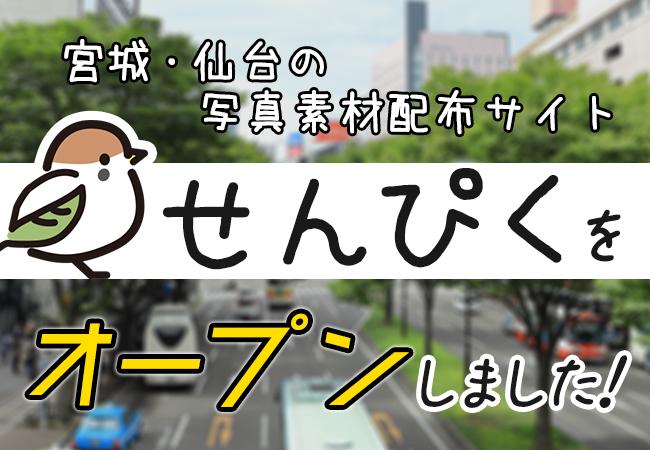 『宮城・仙台の写真素材配布サイト せんぴく』をオープンしました!