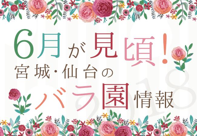 6月が見ごろ!宮城・仙台のバラ園情報2018